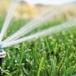Quali irrigatori da giardino scegliere tra popup statici e dinamici